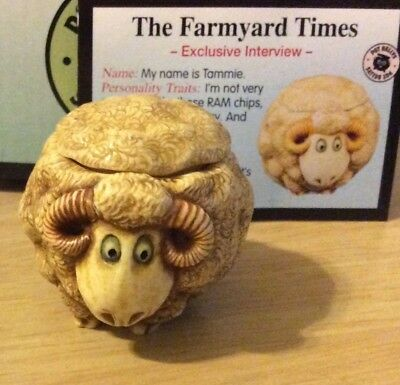 NIB! Harmony Kingdom Ball POT BELLY Farmyard Tammie Sheep Ram Gift Trinket Box