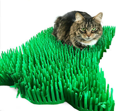 Cat or Kitten toy Tissue Paper Grass Mat UK FAST DELIVERY pet toys Still Posting