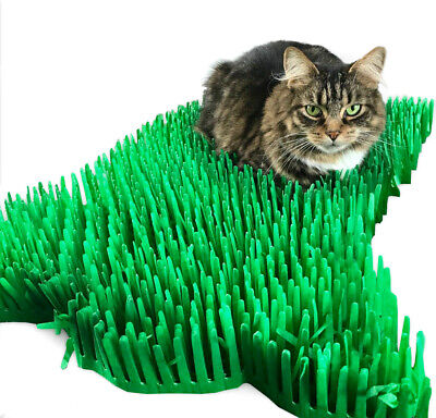 Tissue paper grass mat cat toy (cat not included) 15 x 24 inches FAST DELIVERY