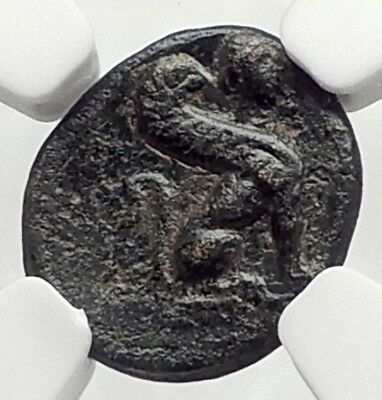 KAUNOS in CARIA 350BC RARE Authentic Ancient Greek Coin BULL & SPHINX NGC i73122