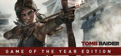 Tomb Raider: GOTY Game Of The Year Edition (PC) STEAM KEY GLOBAL, No DVD/CD