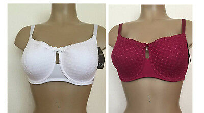 24 x WIRED LIGHTLY PADDED BRA FROM TROFE 2 COLOURS 34 36 38 40 B C D MIX