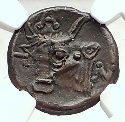 PANTIKAPAION in BOSPORUS 325BC Authentic Ancient Greek Coin Pan Bull NGC i73294