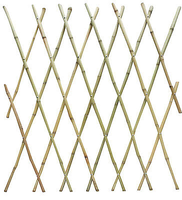 BOND MANUFACTURING CO Bamboo Fence, 4-Ft. x 6-Ft. SMG12013