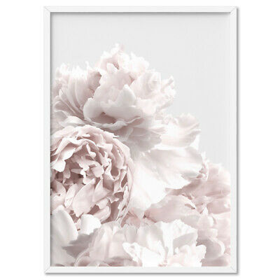 Peony Peonies in Neutral - Wall Art Print Poster Canvas - Scandi