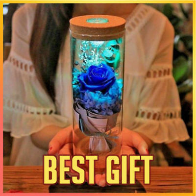 Hot Blue Rose Bottle LED Lamp Dimmer Romantic Flower With Remote Control Night