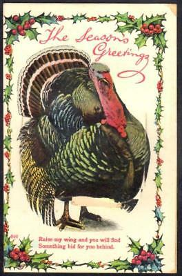 Vintage Christmas Mailing Novelty PPC - Turkey, Raise My Wing & You Will Find .