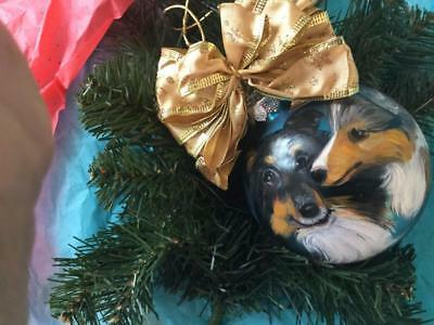Sheltie &puppy Hand Painted Glass Christmas Ornament