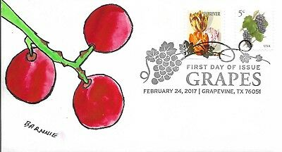 FDC Grapes Grapevine TX February 24 2017 Hand Painted Cachet by Barnnie