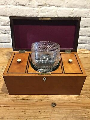 Antique Satin Wood Tea Caddy With Fitted Interior And  Glass Mixing Bowl