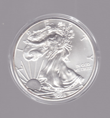 2009 America USA Silver 1 oz Liberty Eagle $1 One Dollar Coin in capsule 1oz +