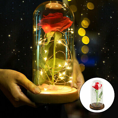 Beauty and The Beast Rose LED Lighted Glass Lamp Dome Valentine Christmas Gift
