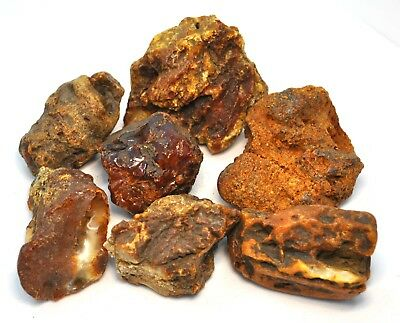 GENUINE BALTIC AMBER. RAW STONES  199.73 gr.