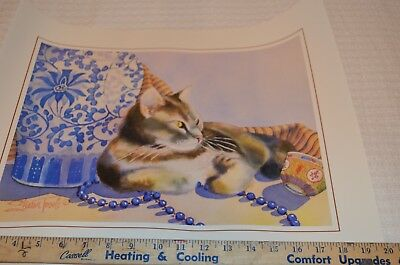 Siamese Cat 16x20 Print/Poster by Sharon Towle 16X20
