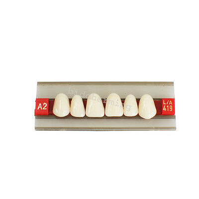 Anterior teeth G419 Acrylic Resin Denture Dental Teeth Shade A2 A3 Upper tooth