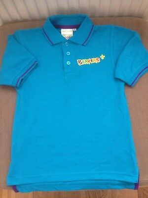 """Beaver Tipped Boy's Polo Shirt Turquoise NEW 26"""""""