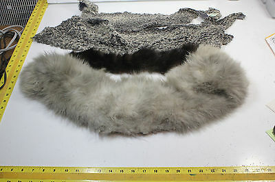 Mixed Lot of 14 pcs. of Various Furs, various sizes Shapes and conditon