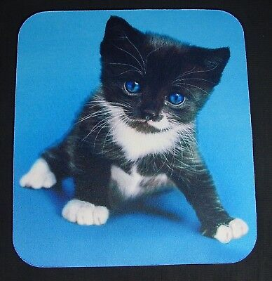 "Mouse Pad Cat Kitten ""Wouldn't You Rather Hold Me Than Your Mouse?"" Mousepad"