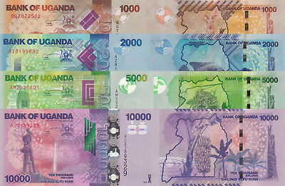 Uganda 4 Note Set: 1000 to 10000 Shillings (2013) - p49b, p50b, p51b, p52c UNC