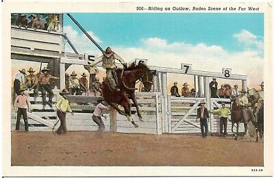 Riding an Outlaw Rodeo Cowboy Western Postcard