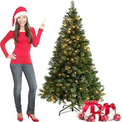 5ft,6ft Pre-Lit Green Artificial Christmas Tree w/Accessories Warm White LEDs