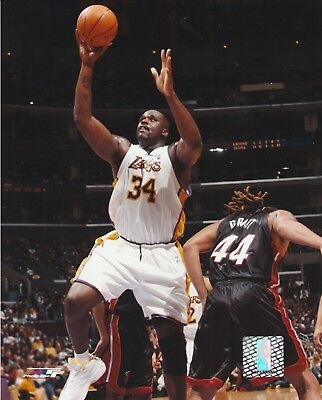 Shaquille O'neal #34 La Lakers 8X10 Licensed Color Nba Photo File Lay Up