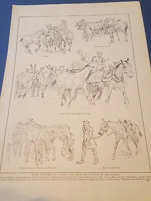 WWI ANTIQUE PRINT Trench Art - Sketches of Officers and horses at the Front