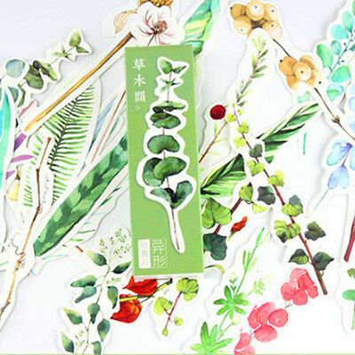 30pcs Natural Plant Bookmarks Marker Stationery Book Labels Clips Decoration F
