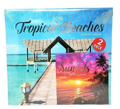 2019 Calendar 2-Pack Wall & Desk size, 12 month, Sealed, New ~ BEACHES / SUNSETS