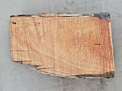 Rare Live Edge Wood Slab Alligator Juniper Cedar Craft Rustic Slab Lumber 616