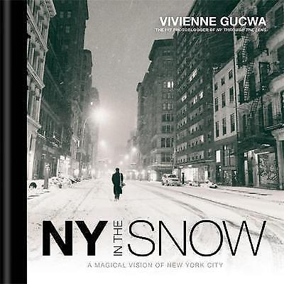 New York In The Snow, New Books