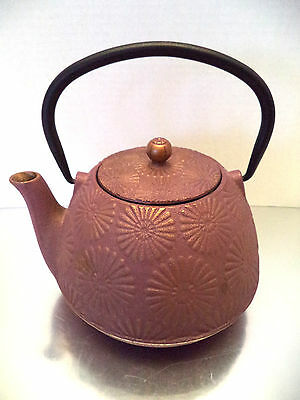 tea pot kettle Cast iron Tetsubin Japanese strainer purple gold floral