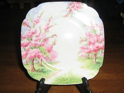 Royal Abbert Fine China Made In England Blossom Time Side Plate Pre-Loved