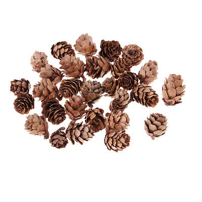 30x Small Natural Dried Pinecones Home Party Hanging Ornaments Wedding Decor