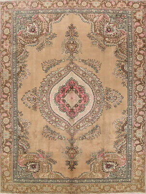 Antique Geometric Muted Beige Brown Color 9x12 Tebriz Persian Oriental Area Rug
