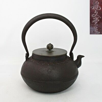 A423: Japanese high-quality iron kettle TETSUBIN with relief by famous RYUBUN-DO