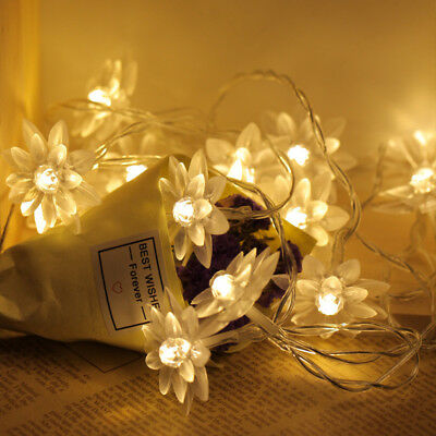 AA Battery Lotus Flower 20 LED String Lights Christmas Night Party Decor Lamp