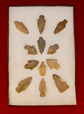 Collection of 12 Authentic Adena Native American Points; Kentucky