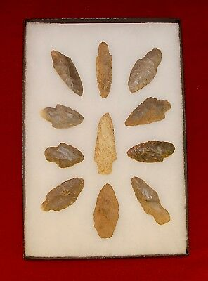Collection of 11 Authentic Adena Native American Points; Kentucky