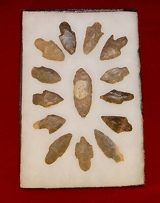 Collection of 14 Authentic Adena Native American Points; Kentucky