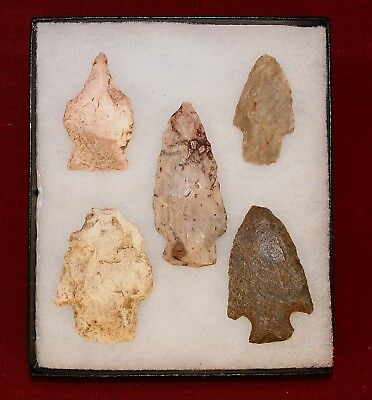 Collection of 5 Authentic Adena Native American Points; Kentucky