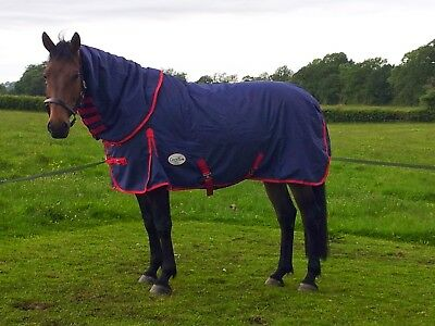Medium Weight Turnout Rug Cosytum Belly Cover 80 00