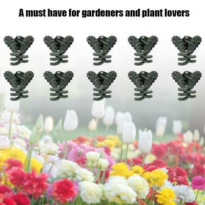 40PCS Orchid Clips Daisy Garden Flower Plant Support for Supporting Stems Grow
