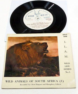 "Wild Animals Of South Africa 1 - Südafrika FIELD MUSIC 7"" EP African Music EX/EX"