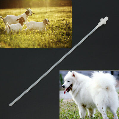 50 Canine Dog Goat Sheep Artificial Insemination Breed whelp Catheter Rod Set