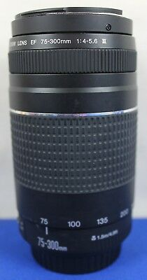 Canon Zoom Lens EF 75-300mm 1:4-5.6