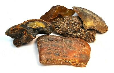 AMBER / raw baltic stones bernstein natural bursztyn Baltic genuine 200.93gr 琥珀