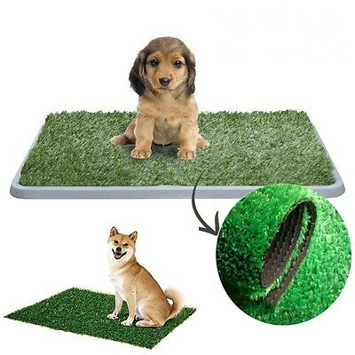 1-2pcs M/L Portable Indoor Dog Pet Potty Training Toilet Loo Pad Tray Grass AU