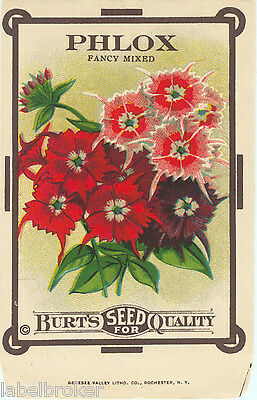 VINTAGE SEED PACKET FLOWERS C1910 GENERAL STORE GARDEN SCARCE MEXICAN FIRE BUSH