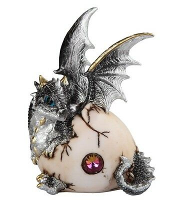 Silver Gray Dragon Hatching From Egg Jewel Shell 6 Inch Figurine Statue GSC71663